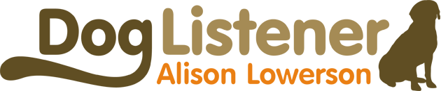 Logo design for Alison Lowerson